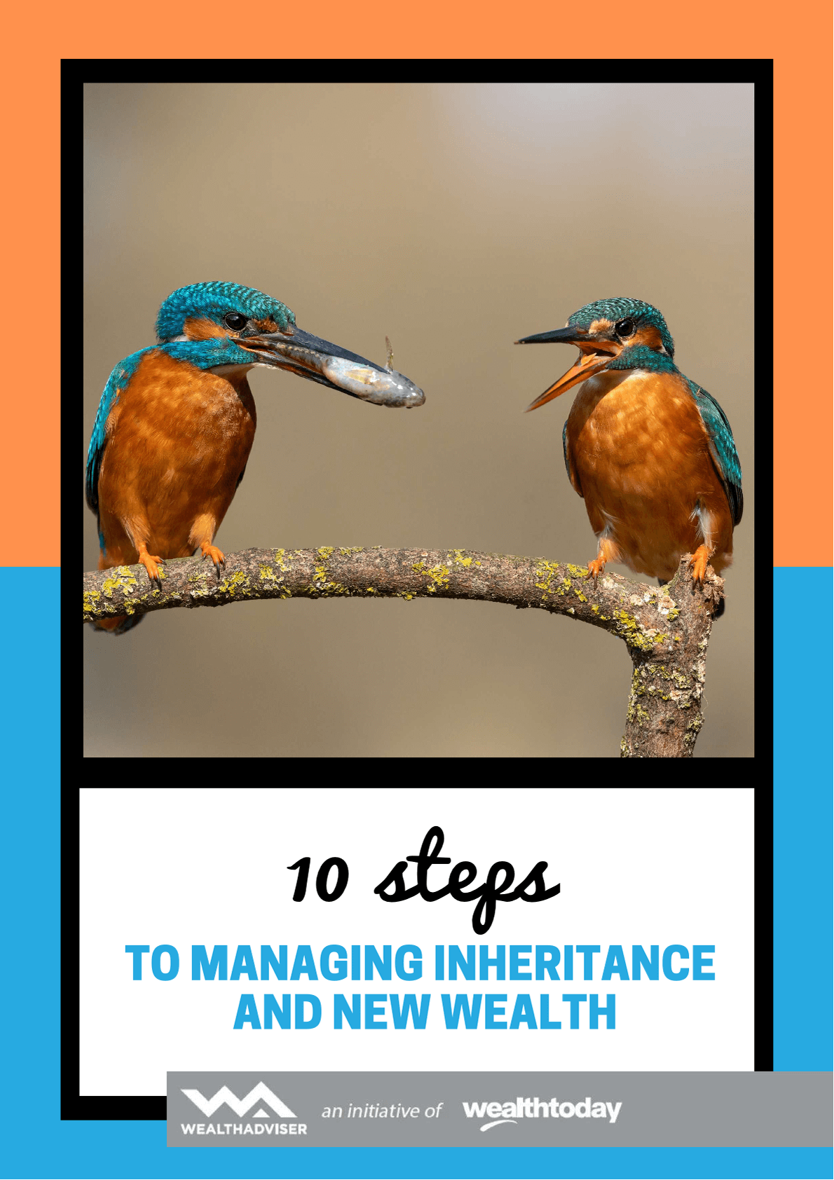 10-steps-to-managing-inheritance-and-new-wealth-cover-wt